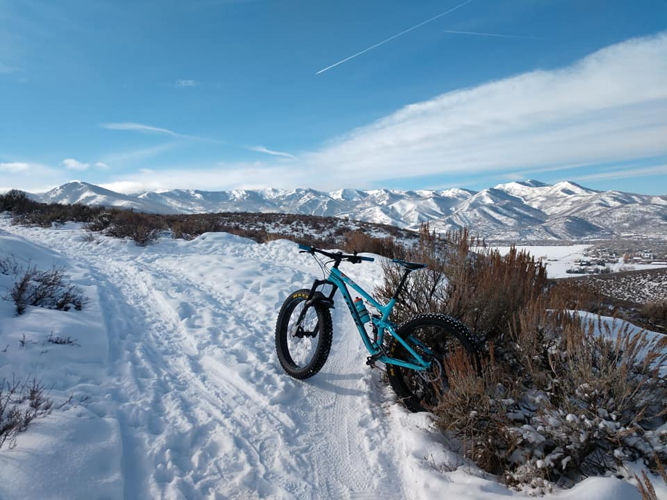 fat bike suspension